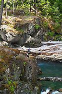 A hiker looks down at the Ohanapecosh River in Mount Rainier National Park in Washington State, USA.