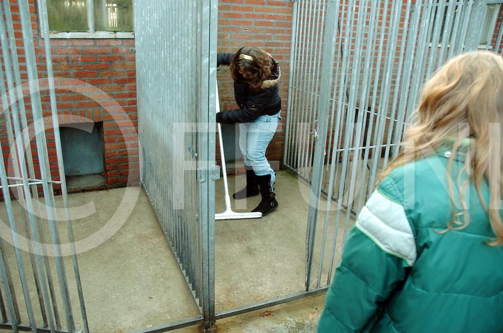 061129 den ham ned<br /> Dierenasiel Den Ham krijgt cheque van kinderraad Slagharen. Vanmiddag mochten de kinderen een handje helpen bij dierenasiel e Crull.<br /> fotografie frank uijlenbroek&copy;2006 michiel van de velde