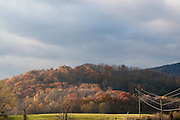 Fall foliage intersect power lines on a Autumn afternoon in Crozet, Virginia.