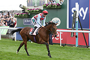 HERE AND NOW (11) ridden by jockey Harry Bentley and trained by Ralph Beckett wins The Sky Bet Stakes over 2m (£70,000)  during the Yorkshire Ebor Festival at York Racecourse, York, United Kingdom on 22 August 2018. Picture by Mick Atkins.