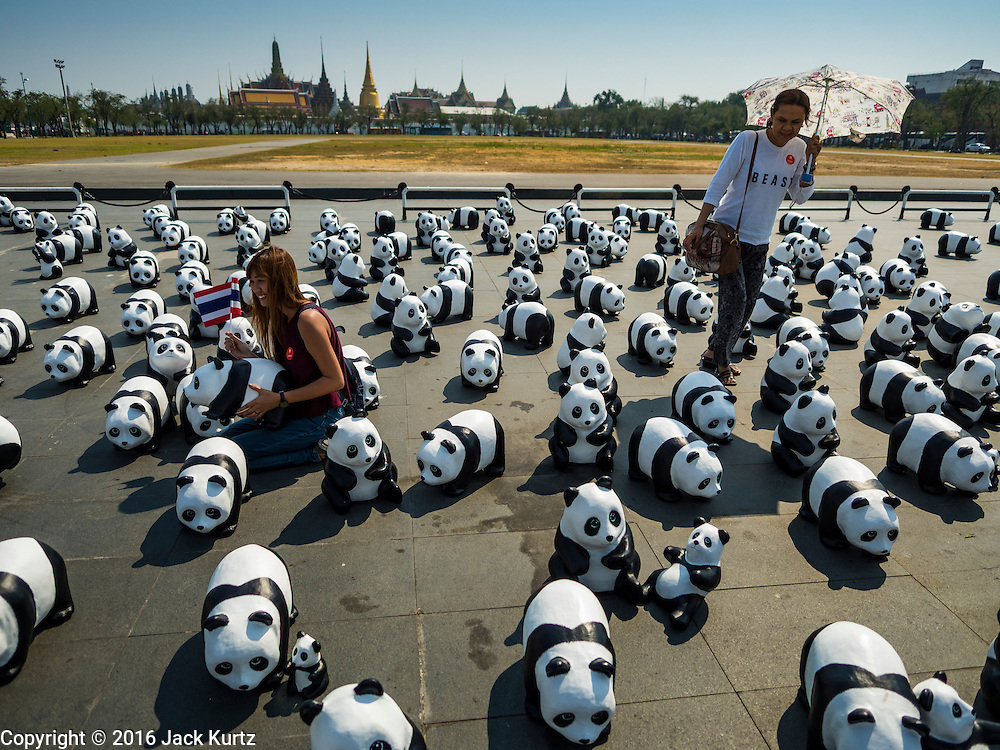 "04 MARCH 2016 - BANGKOK, THAILAND: People walk among the paper maché pandas at the  opening of the ""1600 Pandas+ World Tour in Thailand: For the World We Live In and the Ones We Love"" exhibit in Bangkok. The 1600 paper maché pandas, an art installation by French artist Paulo Grangeon will travel across Bangkok and parts of central Thailand for the next week and then will be displayed at Central Embassy, a Bangkok shopping mall, until April 10. The display of pandas in Thailand is benefitting World Wide Fund for Nature - Thailand and is sponsored by Central Embassy with assistance from the Tourism Authority of Thailand and Bangkok Metropolitan Administration and curated by AllRightsReserved Ltd.     PHOTO BY JACK KURTZ"