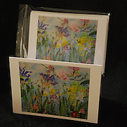 Single card with envelope in a crystal clear bag - $3.25, Package of five cards (all the same) with envelopes in a ziplock bag - $11. Blank on the inside to write your own message.