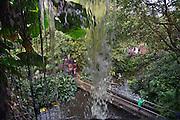 Nederland, Arnhem, 12-2-2013De Bush, onderdeel van Burgers zoo. Groot kunstmatig stuk regenwoud, jungle.. Bezoekers in dierentuin. Recreatie.Foto: Flip Franssen/Hollandse Hoogte