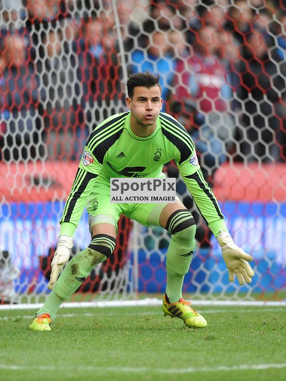 Karl Darlow Goalkeeper Nottingham Forest, Nottingham Fores v West Ham, FA Cup, City Ground, Nottingham, 5th Januar 2014