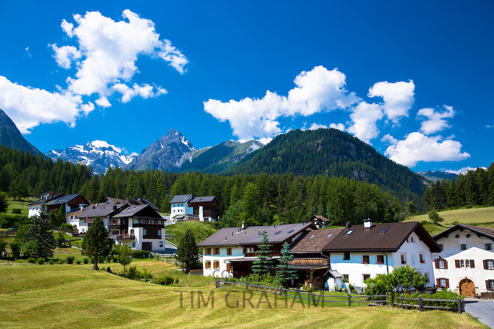 Fontana village surrounded by larch forest in the Lower Engadine Valley, Swiss Alps, Switzerland