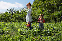 Mother and daughter (5-6) in strawberry field