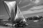 A4.<br />