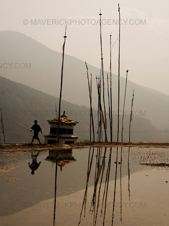 A man walks past a lake and past prayer flags in a field on his way to the Temple of Fertility built by Divine Madman. Punakha..Commonly described as the last Himalayan Shangrila, Bhutan is a country of unique serenity, harmony, and beauty. Nestled between India, China, and Tibet, this independent country whose name translates as 'the Land of the Thunder Dragon' has for the past 300 years  proactively followed a policy of isolation and cultural protection. Travel in and out of the country is strictly regulated, and the impact of outside influences on the local culture is carefully monitored. Spirituality is an important aspect of Bhutanese culture, with Buddhism being interlinked with everyday life. Gross National Happiness (GNH), as opposed to GNP/GDP, forms the cornerstone of its development strategy which focuses on a holistic development strategy that complements its cultural and Buddhist spiritual values.