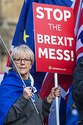© Licensed to London News Pictures. 26/03/2019. London, UK. An anti-Brexit protester stands with a placard and European flag opposite Parliament. MPs have passed an amendment which gives Parliament a series of indicative votes on alternatives to Prime Minister Theresa May's Brexit deal. Photo credit: Rob Pinney/LNP