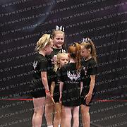 1025_Phoenix Flyers - Mini Level 2 Stunt Group