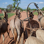 Venda Village in South Africa, near Kruger National Park.