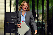 © Licensed to London News Pictures. 11/06/2013. westminster, UK. Justine Greening, Conservative MP,  International Development Secretary.  Ministers on Downing Street today 11th June 2013. Photo credit : Stephen Simpson/LNP