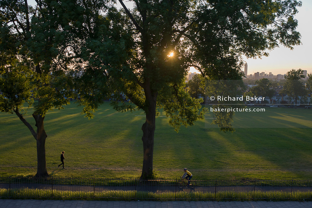Walker and cyclist under 100 year-old ash trees in a park in the south London borough of Lambeth.
