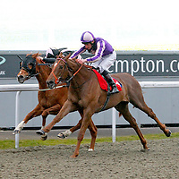 Pivatol Silence and Adam kirby winning the 7.00 race