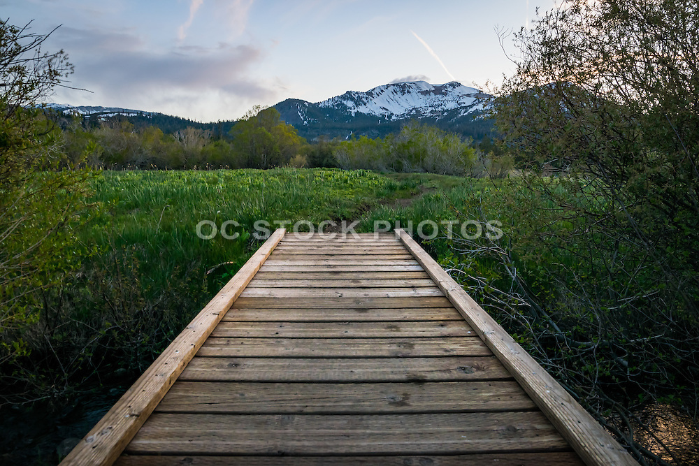 Mammoth Meadows Board Walk