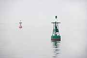 buoys in the fog