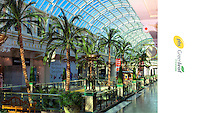 Professional advertising photography taken in the Trafford centre manchester showing off the palm trees and interior landscaping