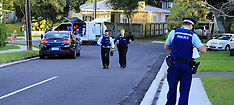 Auckland-Police launch homicide after Te Atatu incident
