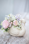 English Roses and Hydrangea in white swan vase