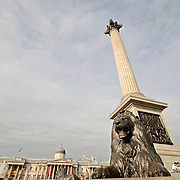 Nelson's Column at Trafalgar Square