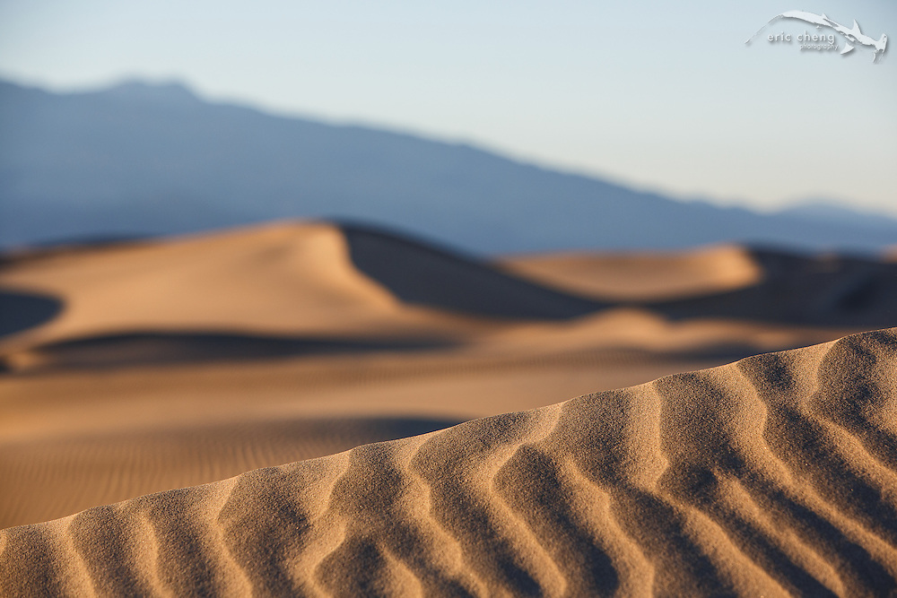 A dune's knife edge at Mesquite Dunes, Death Valley, California
