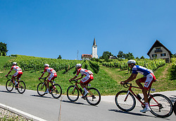 Marko Kump (SLO) of Adria Mobil, Ziga Horvat (SLO) of Adria Mobil, Aljaz Jarc (SLO) of Adria Mobil during 2nd Stage of 26th Tour of Slovenia 2019 cycling race between Maribor and Celje (146,3 km), on June 20, 2019 in  Slovenia. Photo by Vid Ponikvar / Sportida