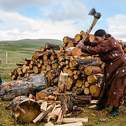 Tsaatan reindeer herder woman chopping firewood with children nearby. The Dukha collect their wood from lower altitude forests as there is no wood in their settlement. Approximately 200 families comprise the Tsaatan or Dukha community in northwestern Mongolia, whose existence is intimately linked to their herds of reindeer. Photo © Robert van Sluis
