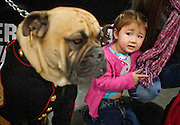 """Brynlee Hodson shys away from """"Gunny Monster,"""" the USMC mascot for the Marine League West 1332nd Detachment at the South Towne Expo Center during the 2013 Rocky Mountain Gun Show, Saturday, Jan. 5, 2013."""