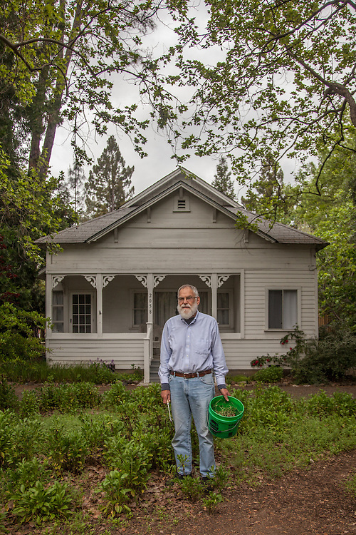 """We moved into this house in 1993...I sewed some seeds here about 10 years ago...not sure what they are but they flower all summer.  Now I'm trying to keep the weeds from taking over...be careful where you step.""  -Retired software engineer Martin Segal in front of his house on Grant Street in Calistoga"