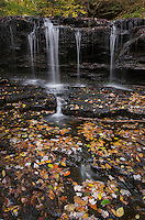 Cascades Ricketts Glen State Park, Pennsylvania