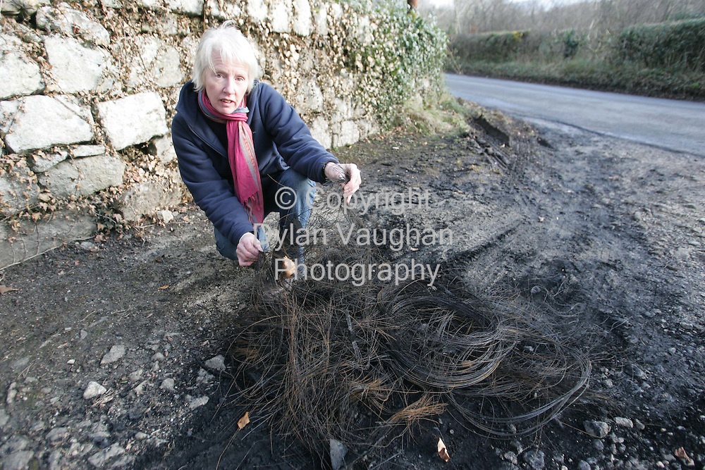 20/2/2006.Mary White of the green party pictured with some of the remains of the tyres and gas cylinder which were set alight outside her home in Borris County Carlow..Picture Dylan Vaughan