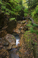 Flume Gorge trail Franconia Notch New Hampshire