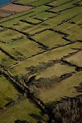 Nederland, Limburg, Gemeente Vierlingsbeek, 07-03-2010; Maasheggen tussen Vierlingsbeek en Boxmeer. Percelen gescheiden door gevlochten heggen van meidoorn en sleedoorn gelegen in de uiterwaarden van de Maas en in gebruik voor het weiden van vee. Historisch landschap met bijzondere ecologische waarde.Maasheggen between Vierlingsbeek and Boxmeer. Plots (for cattle) are seprated by means of twinned or woven  hedges of hawthorn and blackthorn. The hedges are located in the floodplain of the Meuse and used for grazing cattle. Historic landscapes with special ecological value.luchtfoto (toeslag), aerial photo (additional fee required);.foto/photo Siebe Swart
