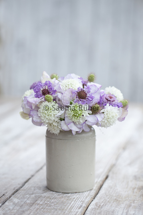 Flower arrangement with Lathyrus odoratus 'High Scent', Scabious 'Snowmaiden', 'Oxford Blue' and seedheads
