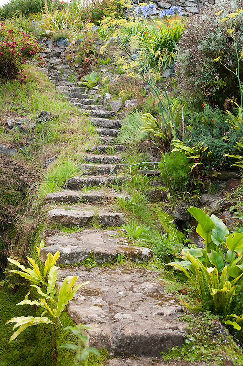 Cadgwith steps