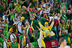 Fans of Lithuania during basketball match between National teams of Lithuania and Croatia in Semifinals at Day 17 of Eurobasket 2013 on September 20, 2013 in Arena Stozice, Ljubljana, Slovenia. (Photo by Vid Ponikvar / Sportida.com)