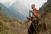 Herder Kashmir 2012