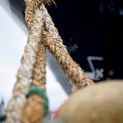 Noorwegen Bergen 30 december 2008 20081230 Foto: David Rozing .Havenstad Bergen, aanlegplaats schip. Bolster en touwen. meerpaal.The city of Bergen, ship and ropes..Foto: David Rozing