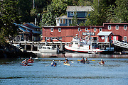 Telegraph Cove, located in Vancouver Island, British Columbia, Canada, is a major hub for whale watching and sea kayaking.