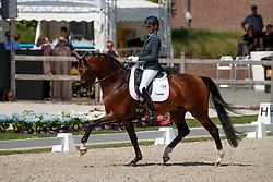 Van Vliet Renate, NED, In Style<br /> World ChampionshipsYoung Dressage Horses<br /> Ermelo 2018<br /> © Hippo Foto - Dirk Caremans<br /> 02/08/2018