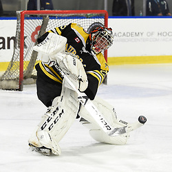 BUFFALO, NY - SEP 21,  2017: Ontario Junior Hockey League Governors Showcase game between the Aurora Tigers and Oakville Blades, Jack Irvine #29 of the Aurora Tigers clears the puck during the second period.<br /> (Photo by Andy Corneau / OJHL Images)