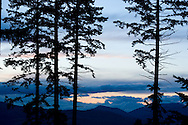 Pine trees frame a scenic vista of Mount Adams in Oregon