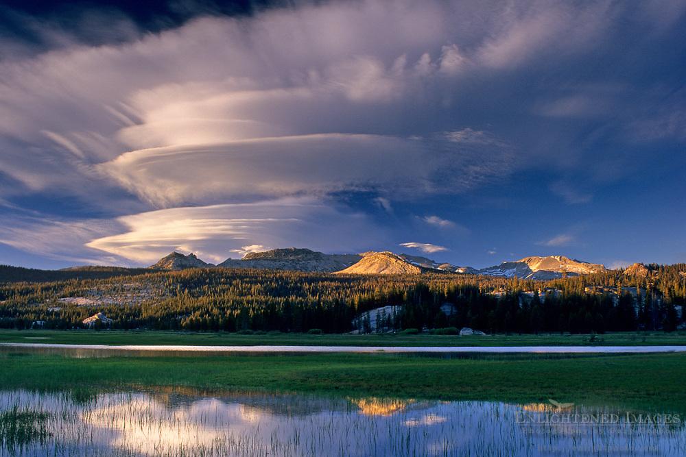 Lenticular cloud at sunset over Ragged Peak and Tuolumne Meadows, Tioga Pass Road, Yosemite National Park, CALIFORNIA