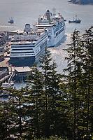 Cruise ships at dock Shot through a strand of Sitka Spruce, Ketchikan, Alaska