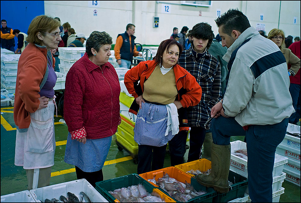 Galicia Fish Industry