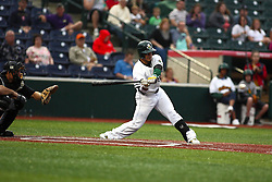 09 June 2011: Brad Agustin bats during a game between the Lake Erie Crushers and the Normal Cornbelters at the Corn Crib in Normal Illinois.