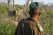 Black Rhino security and monitoring patrol, Mkhaya Game Reserve, Swaziland