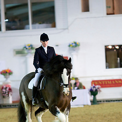 SHS Spring Show 2014  Ridden and Dressage