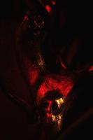 LYON, FRANCE - OCTOBRE 01: Exposition &quot;Vanitas&quot; Ghyslain Bertholon, Gallery Georges Verney-Carron - Lyon.<br /> Lights: Pascal Essertel.<br /> Lyon, France on October 01, 2012