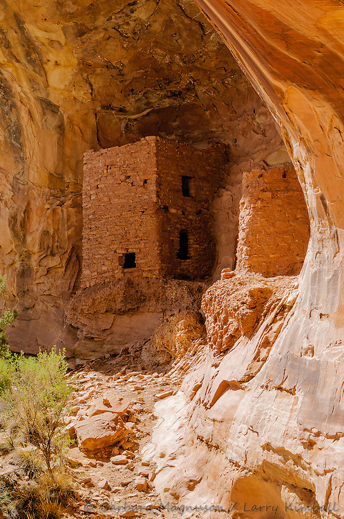 Pueblo II Tower Ruins; north Butler Wash, Comb Ridge, Utah